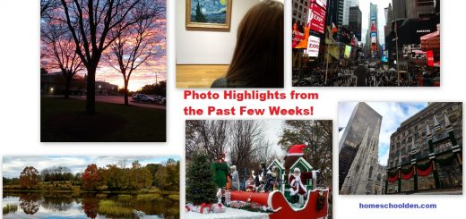 Photo Highlights
