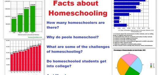 Facts about homeschooling - How many homeschoolers are there Why do people homeschool What are some of the challenges of homeschooling - Do homeschoolers get into college