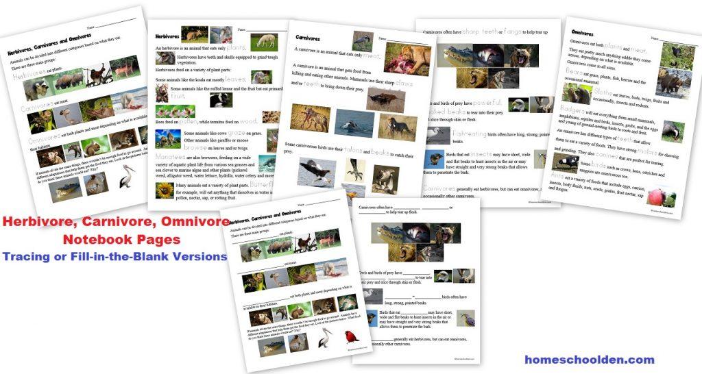 Herbivore Carnivore Omnivore Notebook Pages Worksheets