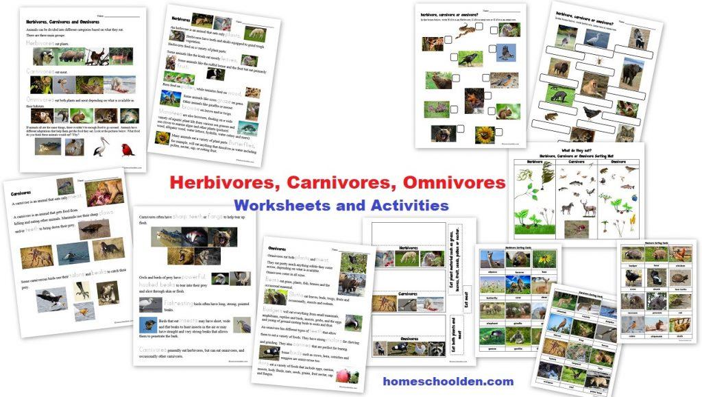 Herbivores Carnivores Omnivores Worksheets Activities Sorting Cards