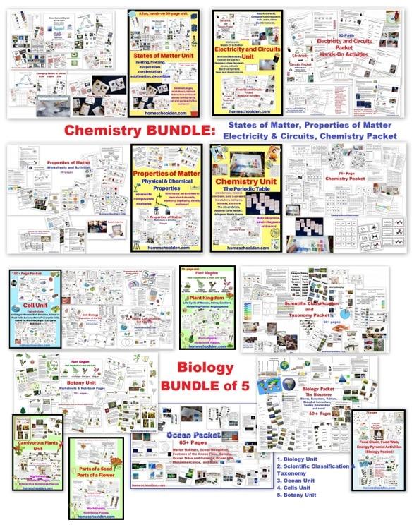 Homeschool Unit Studies - Science bundles