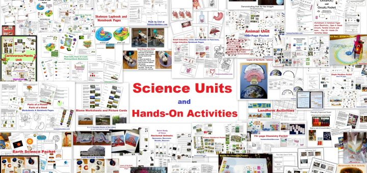 Science Units and Hands-On Activities
