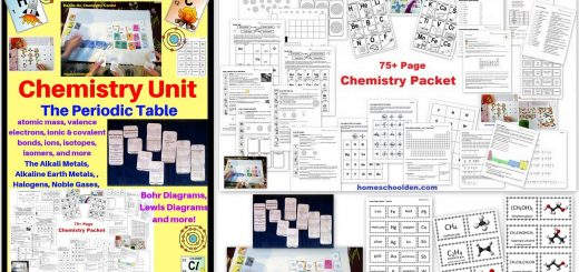 Chemistry Unit The Periodic Table Ions Isotopes Bohr Diagrams and more