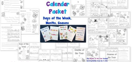 Days of the Week Months of the Year Seasons Worksheets and Booklet