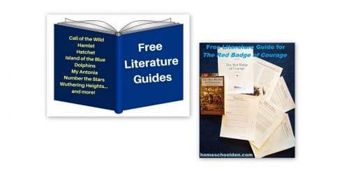 Free Literature Study Guides