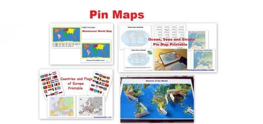 Pin Map Resources