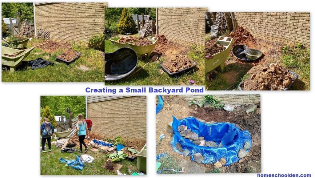 Creating a Small Backyard Pond