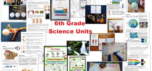 6th Grade Science Units