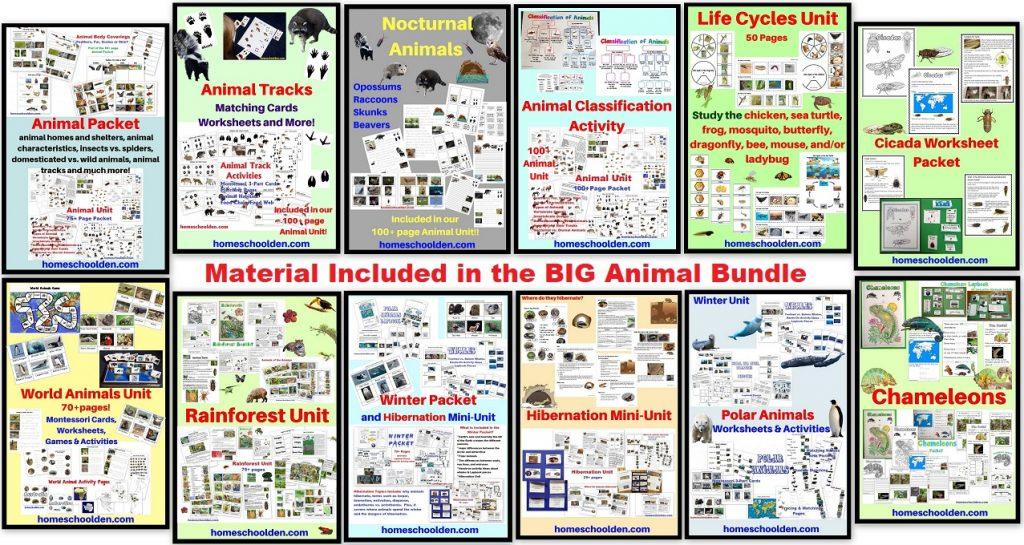 Big Animal Bundle - Worksheets and Activities TOPICS