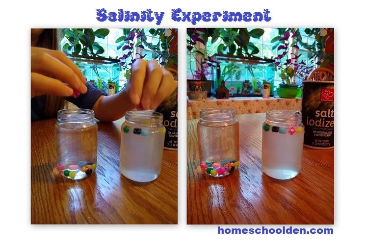 Salinity Experiment - Ocean Unit