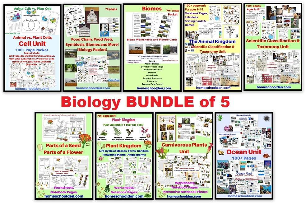 Biology Units