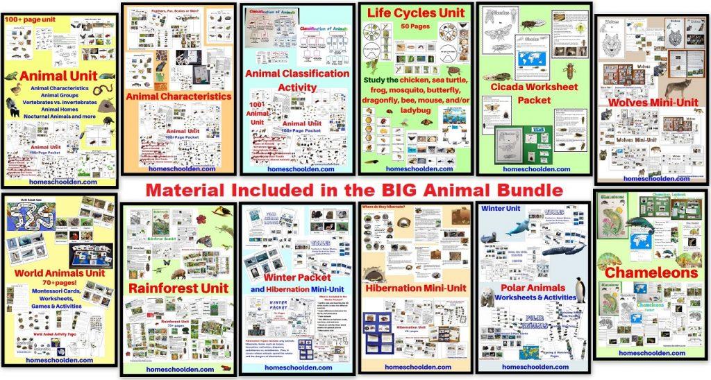 http://homeschoolden.com/wp-content/uploads/2021/01/Big-Animal-BUNDLE-with-8-pdfs.jpg
