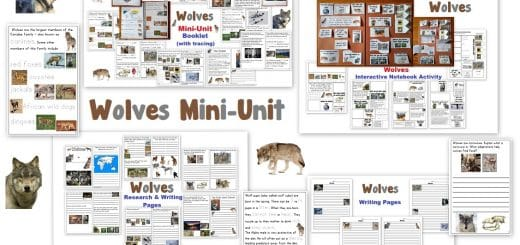 Wolves Mini-Unit Worksheets Notebook Activities Lapbook