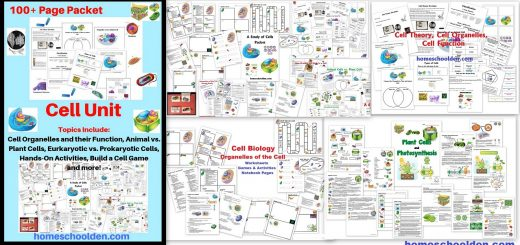 Cell Unit - Plant and Animal Cell Worksheets and Activities