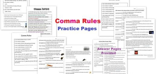 Comma Rules Practice Pages Worksheets