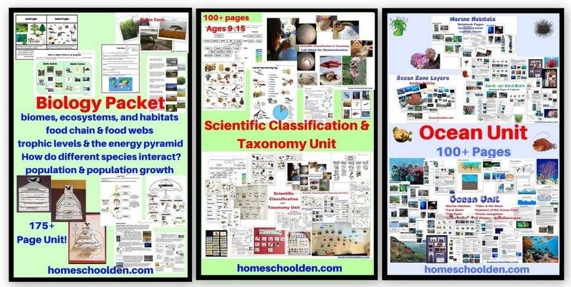 Biology Bundle of 3 - Biology-ecology Unit Scientific Classification and Taxonomy Unit Ocean Unit