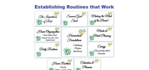 Homeschooling - Establishing Routines that Work