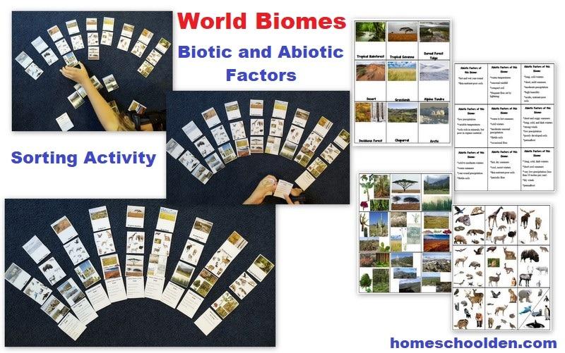 World Biomes - Biotic and Abiotic Factors Activity